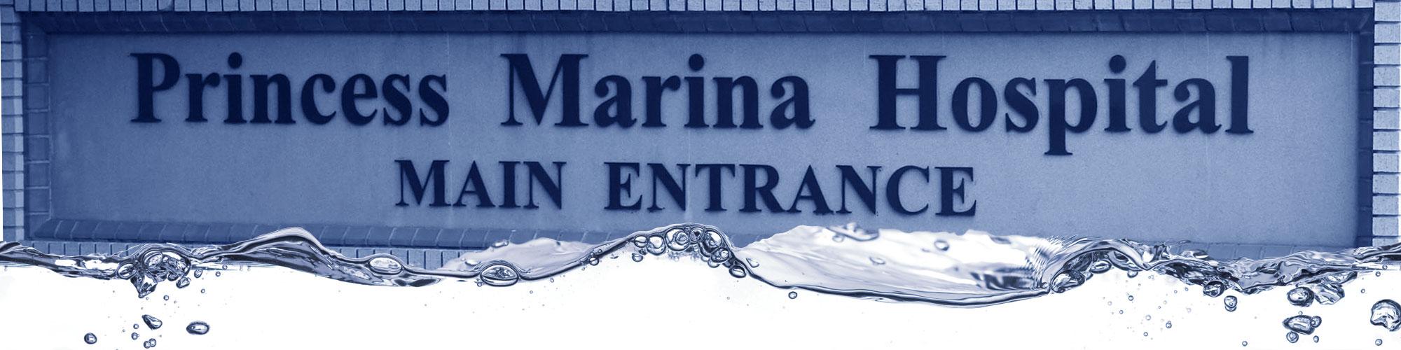 botswana-princess-marina-hospital-catering-laundry-equipment-africa